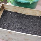1. Fill container to ¾ with potting mix