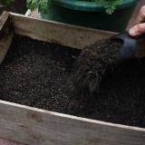 2. Top up with layer of seed raising compost